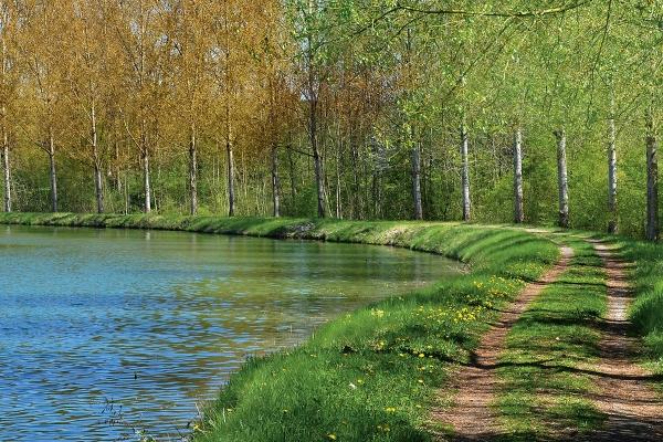 river50877431920.jpg